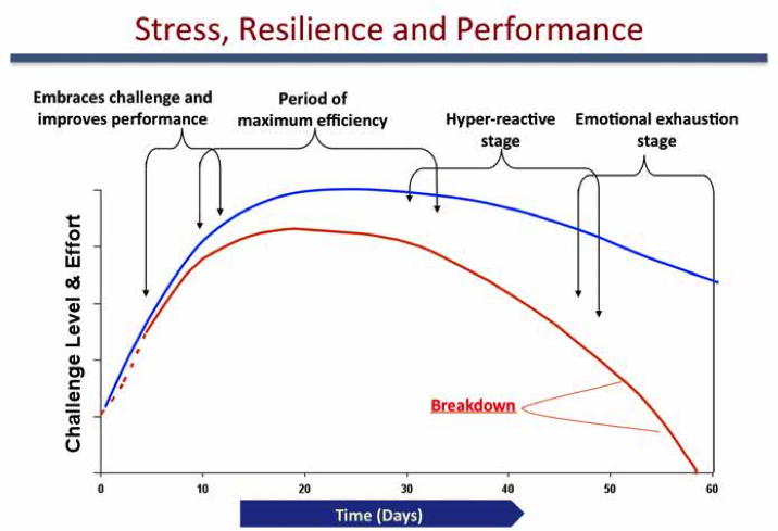 Stress. Resilience and Performance